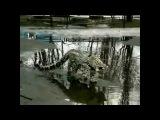 Кошка ашера гуляет по луже Ashera cat walks through a puddle