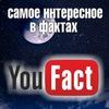 YouFact - самое интересное в фактах