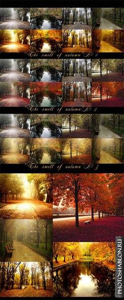 Пресет Осенние экшены для фотошопа для lightroom