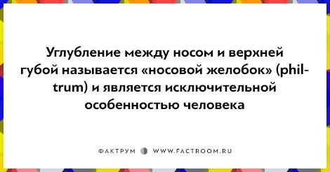 https://pp.vk.me/c629507/v629507271/3d7a6/oOXPHB0eHr0.jpg