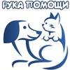 Рука помощи бездомным животным, Хабаровск