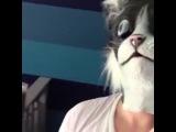 Instagram video by DaViE DaVe