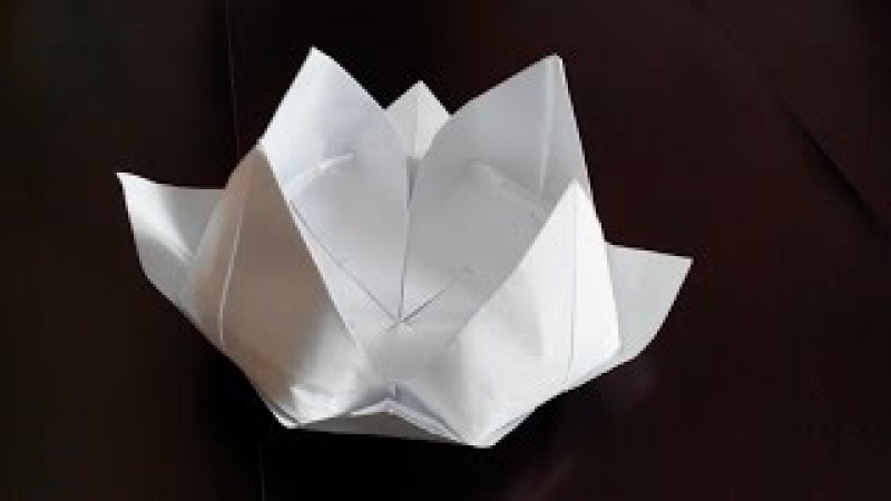 Лилия кувшинка оригами 8 лепестков Lilia water lily origami 8 petals