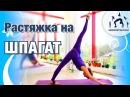 ПРОДОЛЬНЫЙ ШПАГАТ / Растяжка - ИНТЕНСИВ / The Splits Stretches