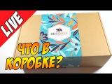 Русские супергерои. Первая коробка от RussBox