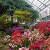 Душеполезные субботники в Ботаническом саду
