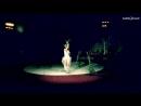 Передвижной цирк-шапито Юность