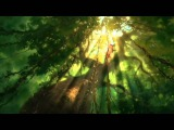 Tarzan - Мультфильм Диснея