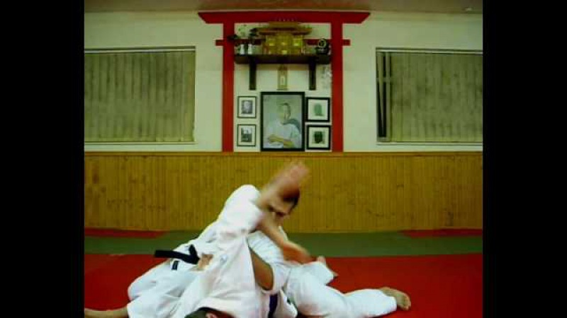 Kote Gaeshi Into Roll - Wado Ryu Karate Jutsu 1