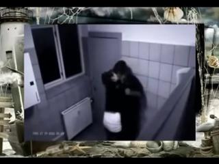 Скрытая камера Секс в туалете Нельзя даме отказывать