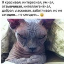 Владимир Травников фото #40