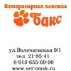 """Ветеринарная клиника в Омске """"БАКС"""""""