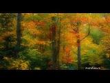 Golden Autumn Raul Di Blasio - Nuestro Poema