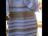 """Ed Zarubin on Instagram: """"Флешмоб с платьем продолжается💃 Ты никогда не угодишь девушке , если не знаешь какого цвета она хочет платье. ✅Максимальный репост ✅Пишем в…"""""""