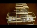 Jaula trampa multicaptura de balancines cubanos y resorte para jilgueros