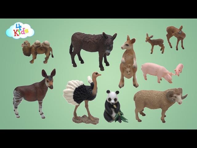 Viele Schleichtiere mit Ihren Tiernamen und Tiergeräuschen lernen für Kinder