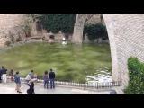 Поиск работы в Испании - Spanish history #3