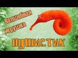 Пушистик Байла - игрушка червячок - Ай Да Посылка 25!