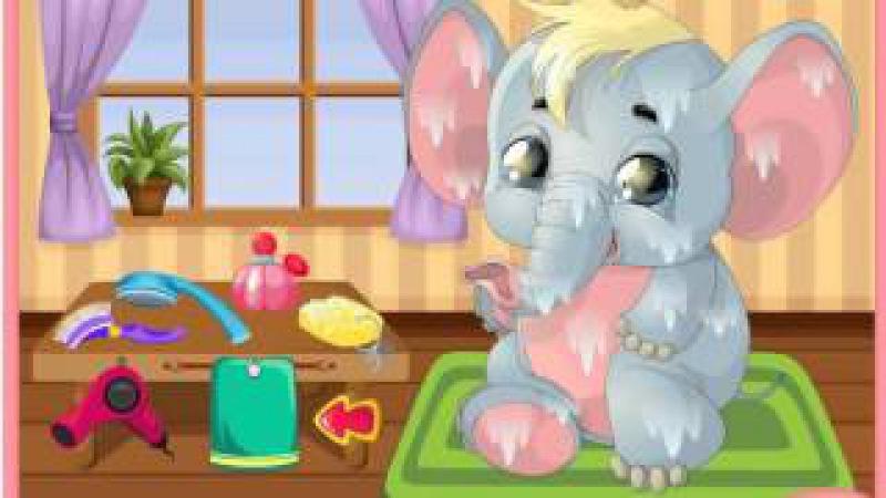 Pet Grooming The Elephant Зоосалон Слонёнок Зоосалон El Elefantito Зоосалон Éléphant Hundesalon Zu