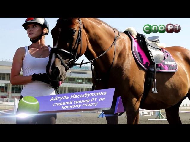 СпоРТ Это Конкур детка Как научиться кататься на лошади