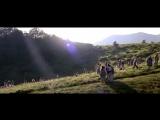 Прекрасная зеленая. La belle verte. 1996. Режиссер Колин Серро.