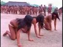 eblya-v-afrike-plemen-video-skritoe