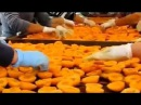 Польза и вред сухофруктов