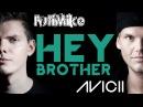 Avicii - Hey Brother w/ lyrics (rock cover by FutiMike)