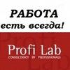 Profi Lab