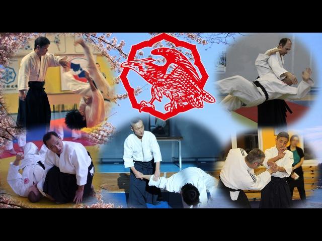 Top Yoshinkan Aikido teachers