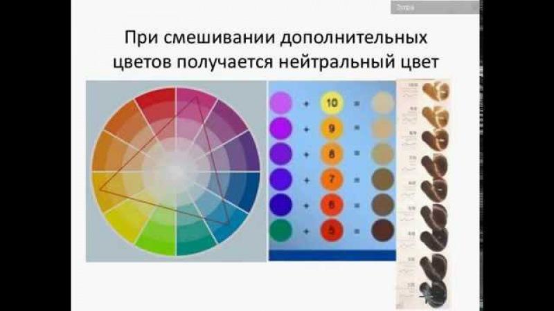 Основы колористики Применение в окрашивании волос макияже и стилистике