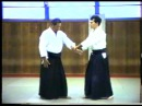 Morote dori-hombu vs iwama