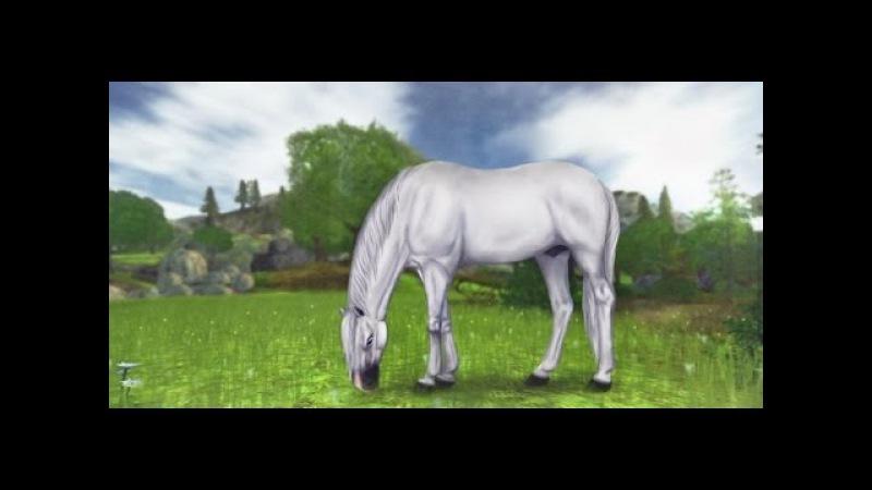 Как сделать дикую лошадь в игре Star Stable