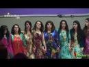 Ahangi Newroz-Mannheim-2013-Amir Hassan-HD