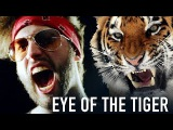 Eye of the Tiger - POWER METAL cover by Jonathan Young