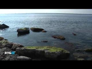 Ловля саргана в Чёрном море 2014 (фильм RTG)