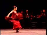 Испанская фламенко под гитару. Испанская гитара и фламенко