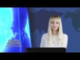 Сводка новостей: Новороссия, Сирия, мир / 14.02.2016 / Roundup News Front ENG SUB