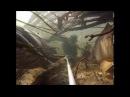 Селфи с гигантскими сомами и карпами в Франции