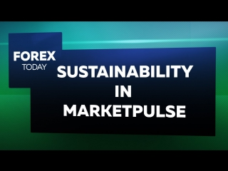 Будущее MarketsPulse