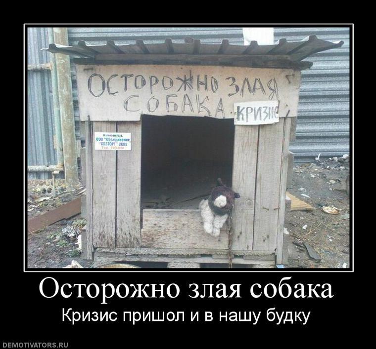 https://pp.vk.me/c629515/v629515559/26e0e/VflfnAKZxgs.jpg