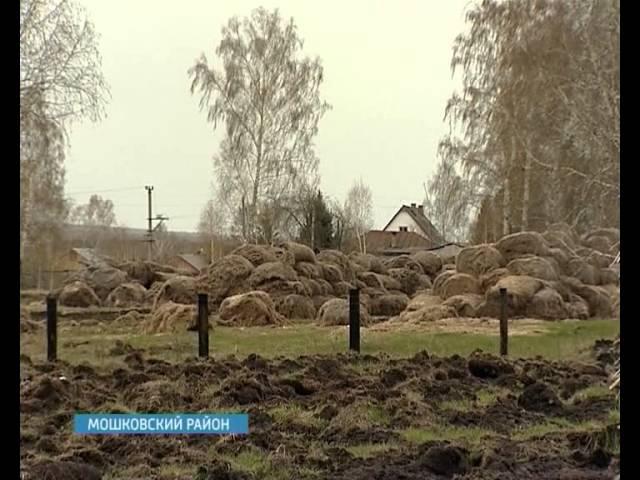 Производство безнаркотической конопли ГТРК Новосибирск кор О Салангина 14 мая 2013 год