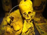 Мумия серого (марсианин). Музей Куско. Перу.