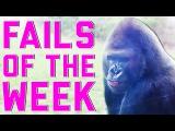 Best Fails of the Week 4 April 2015