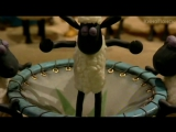 Барашек Шон/Shaun the Sheep (2007 - ...) Русский DVD-трейлер