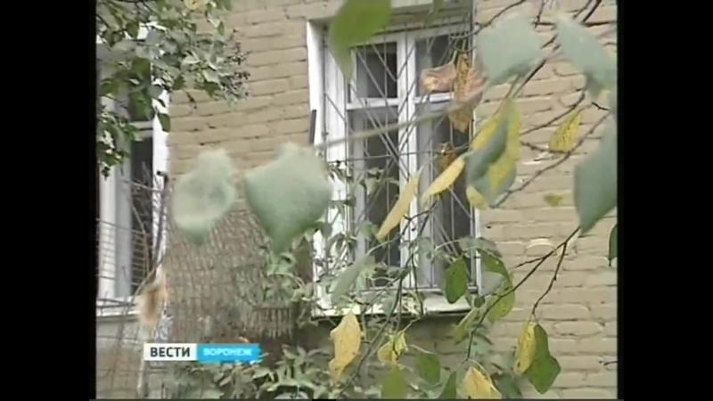 Voronezhtsyi-ne-hotyat-pereezzhat-v-shilovo-iz-svoih-staryih-domov-na-gvardeyskoy_2015-10-7_10-30