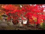 Осенняя красота природы в Японии Часть 3