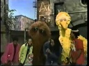 Ziggy Marley and the Melody Makers on Sesame Street - Small People
