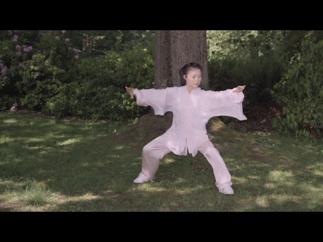 Tai Chi 48 Form by Helen Liang (YMAA)