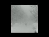 SELENA , UKRAINE LOVES YOU | Cashmere Cat - Trust Nobody (Audio) ft. Selena Gomez, Tory Lanez.
